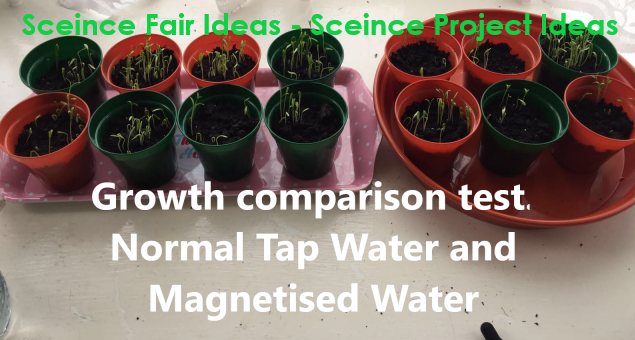 science fair ideas, science project ideas, science fair projects for high school, plant experiments, how plants grow, easy science fair projects, good science fair projects, science fair experiments, science fair topics, science fair ideas for 8th graders, high school science projects, science fair questions, science fair projects ideas for 8th grade, school project ideas, science fair project ideas, magnetic water treatment, good science fair ideas, science fair projects for high school working model, science expo ideas, plant magnets, science fair model, science fair projects for high school working model, science exhibition ideas, science exhibition project, growing plants with magnets, the effect of magnets on plant growth project, science project magnetic field and plant growth