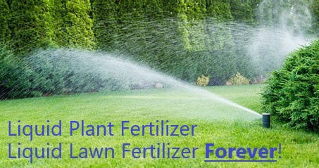 These are all the benefits of installing one of our Water Magnetizer Units. Lawn Fertilizer, grass fertilizer, grow grass fast, how to grow grass fast, growing grass, how to grow grass, new grass fertilizer, best way to grow grass, new lawn fertilizer, growing a lawn, easiest way to grow grass, make grass greener, best fertilizer for new grass, lawn growth, make grass grow, regrow grass, getting grass to grow, quickest way to grow grass